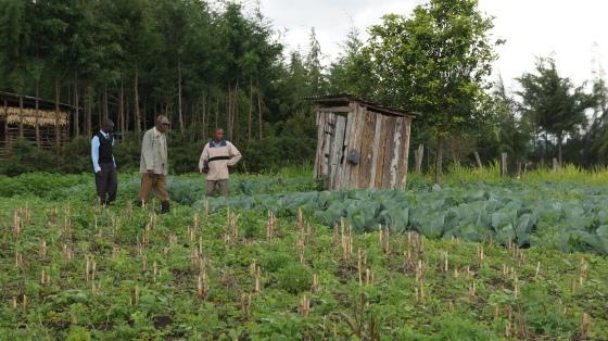 Cosmas, Soloman, Organic Farm - Eco Fuels Kenya